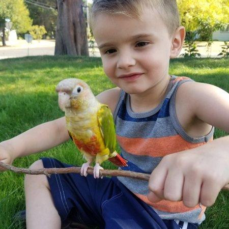 Child Care Job in Tacoma, WA 98466 - Nanny - Care.com