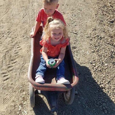 Child Care Job in Sacramento, CA 95835 - Caring, Energetic Nanny Needed For 2 Children In Sacramento - Care.com