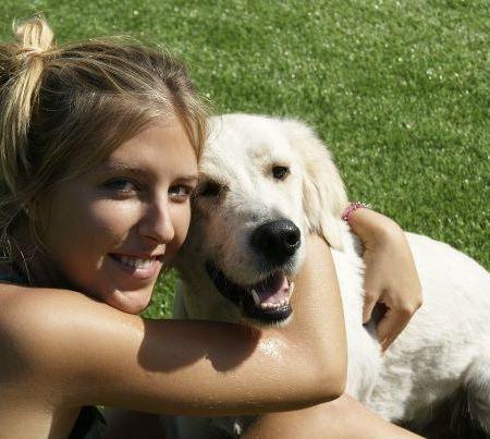 Pet Care Provider from Boston, MA 02116 - Care.com