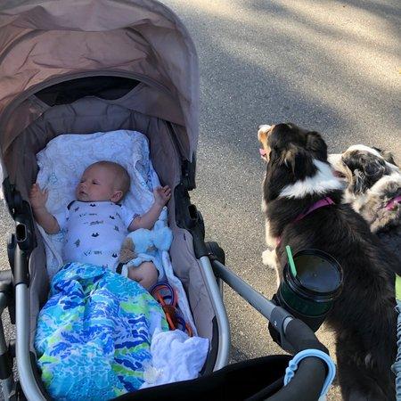 Child Care Job in Melbourne, FL 32904 - Nanny Needed For 1 Infant In Melbourne - Care.com